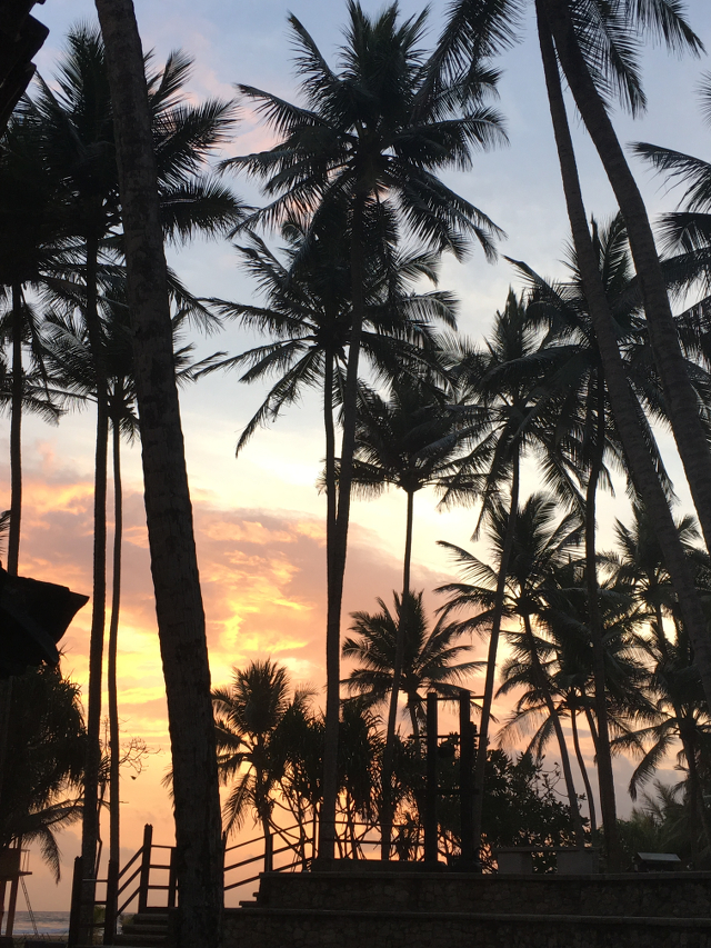 TRAVEL DIARY: Sri Lanka, Pt. 1